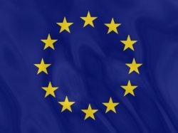 Европейские политики за справедливые выборы в Украине