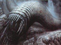 «Пентагон» заказал разработку «боевого червя»