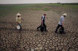 Засуха в Китае достигла угрожающих размеров