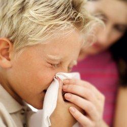 Свиной грипп. Профилактика и лечение