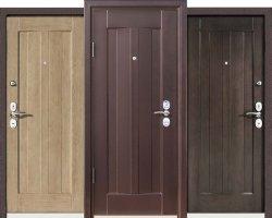 Стальные входные двери: элитные, премиальные, недорогие