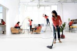 Профессиональный клининг – качественная и оперативная уборка