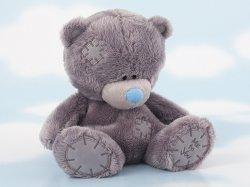 Отличительные черты мишек Тедди от других мишек.